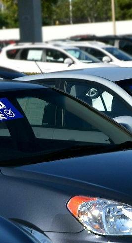 Sanitized Vehicle Vinyl Windshield Stickers