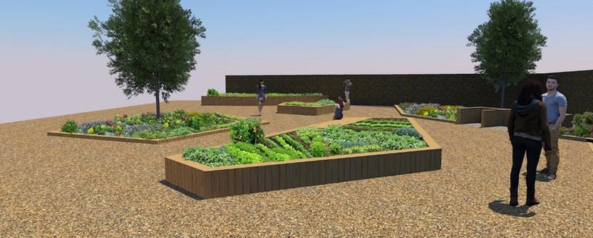 Community Garden 3.jpg