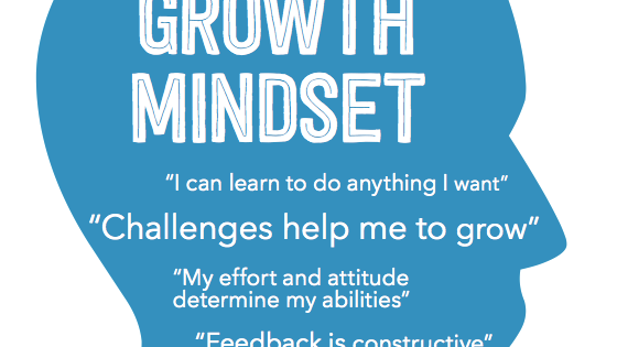 Professional Productivity - The Growth Mindset