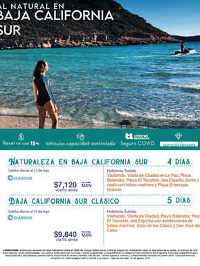 flayer_BAJA CALIFORNIA SUR.jpg
