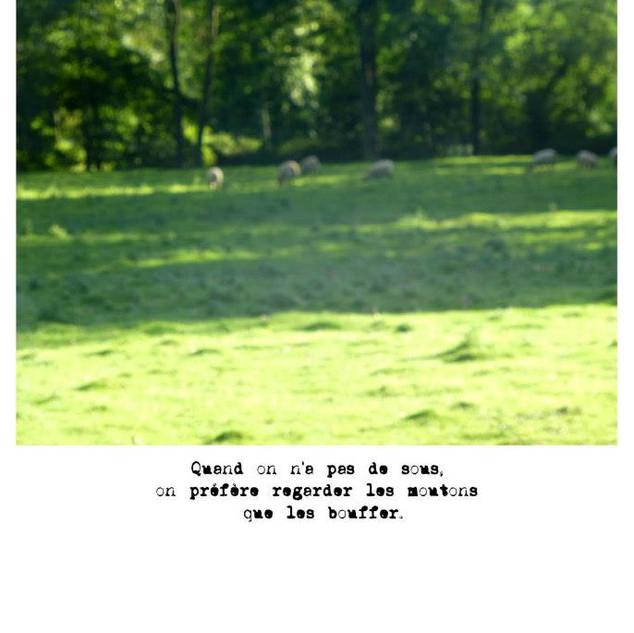 Portfolio Les convoitises, 2011.jpg