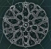 Starfish Geometry