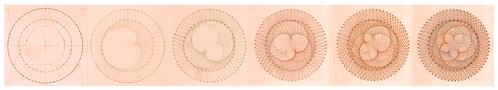 Venus Patterns