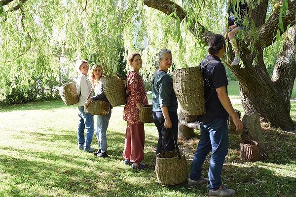 Basketry with Annemarie O'Sullivan