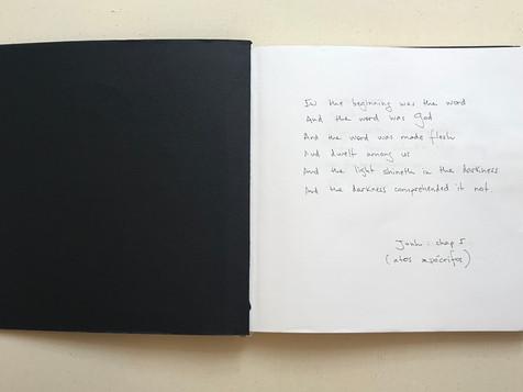 Madagascar, 2020 23x46cm (opened sketchbook)