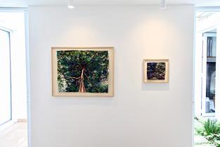 Galeria Arte Hall de Florence Antonio, São Paulo, 2018