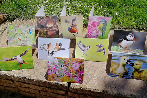 Greeting cards (Pack 2), A6 size, pack of 10