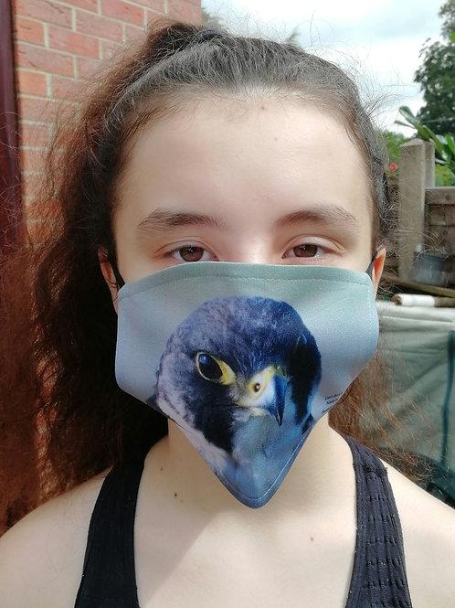 Face Mask - Peregrine portrait