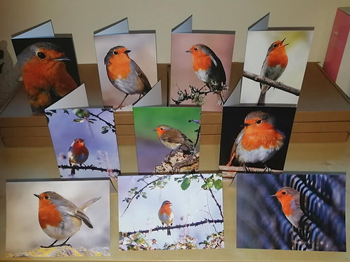 Robin Greeting cards- A6 size, pack of 10