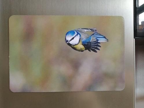 Super Tit - 6x4 fridge magnet