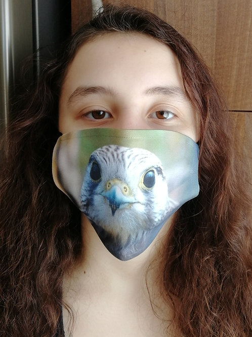 Face Mask - 'Wild Kestrel portrait'