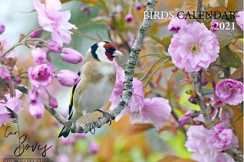 2021 Birds Double A4 Calendar