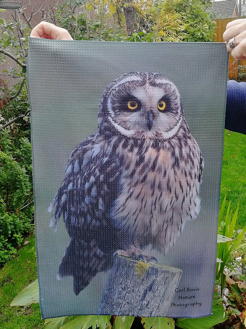 Tea Towel - Short Eared Owl