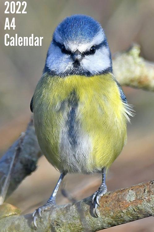 2022 Birds Calendar - A4 version