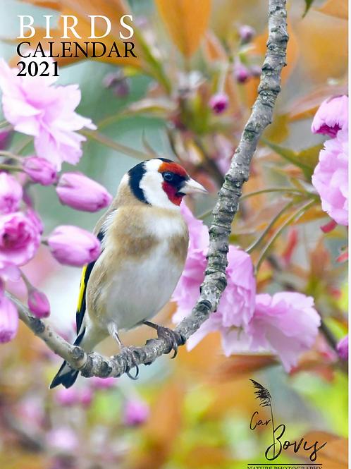 2021 Birds A4 calendar