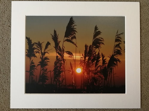 SPECIAL OFFER - 10x8 mounted print, Greylake sunset