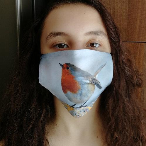 Face mask - 'Robin on a rock'