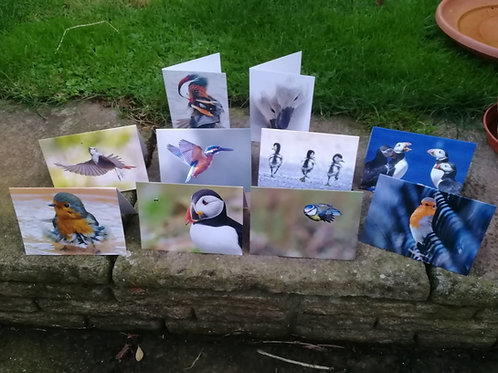 Greeting cards - A6 size, Pack of 10