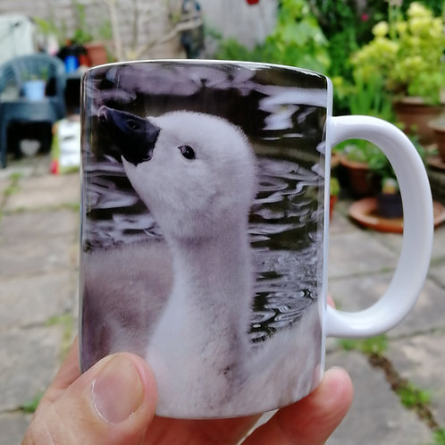 Cute cygnets - coffee mug