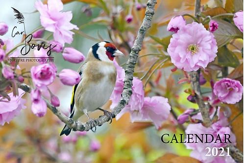 2021 Birds Desktop Calendar