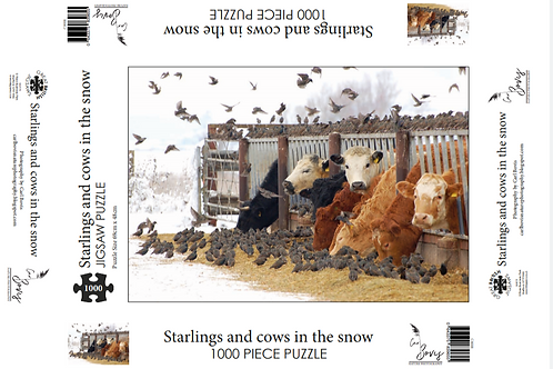 1000 piece jigsaw puzzle - Starlings & cows in the snow