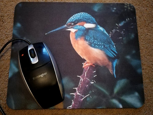 Mousemat - Kingfisher on a thorny branch