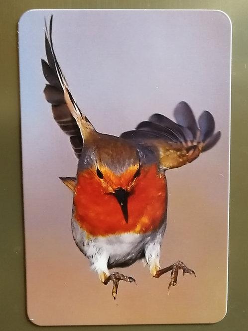 6x4 Fridge magnet - Super Robin.