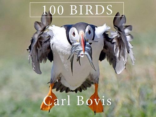 '100 Birds' Book