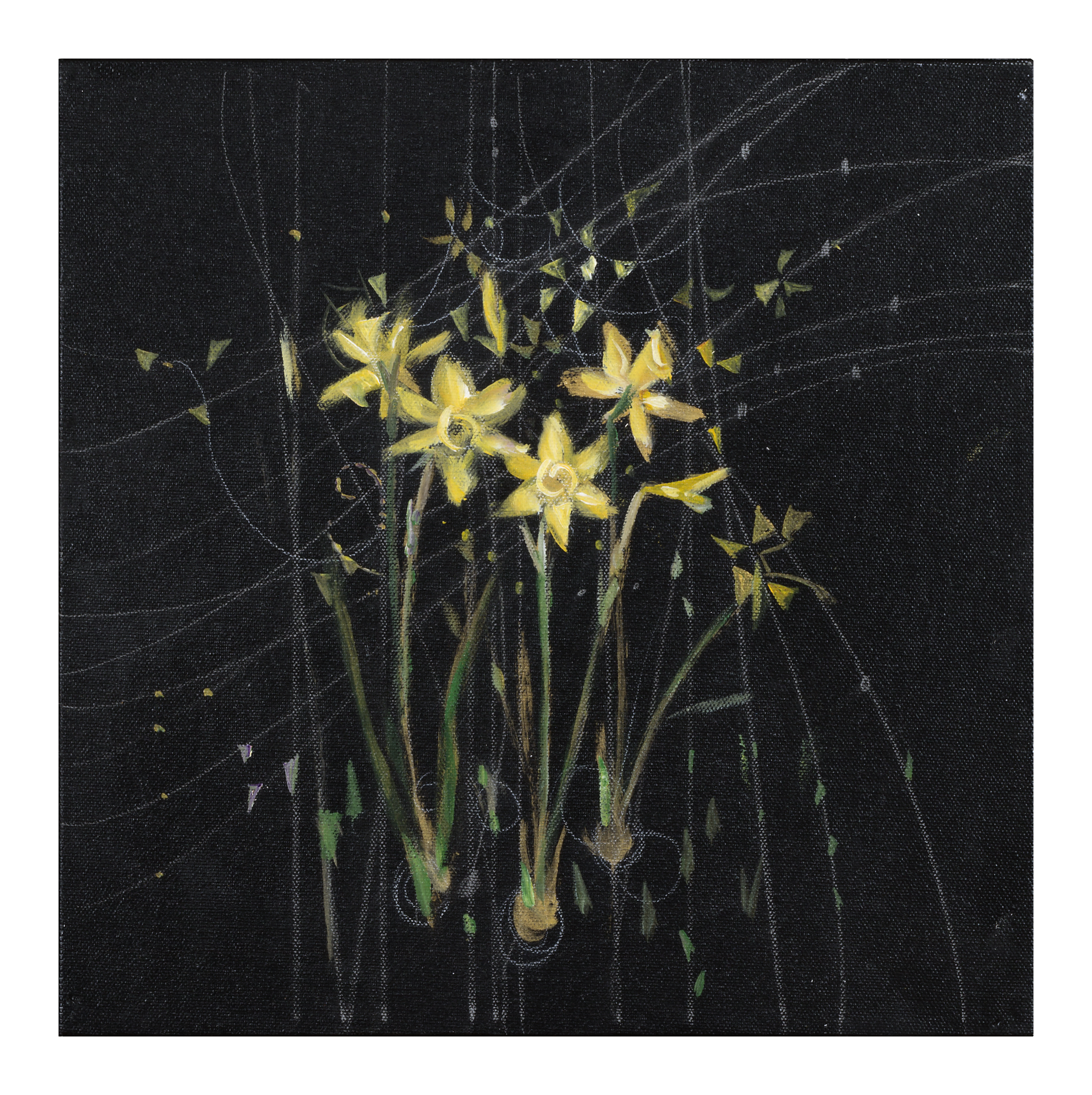 Daffodils: Musical View