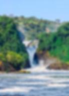 Hiking-and-Nature-walk-Murchnison-Falls.