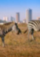 181205174232-nairobi-skyline-1.jpg