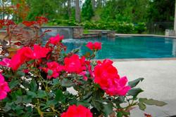 pool+landscape