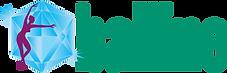 webside fra global web partner