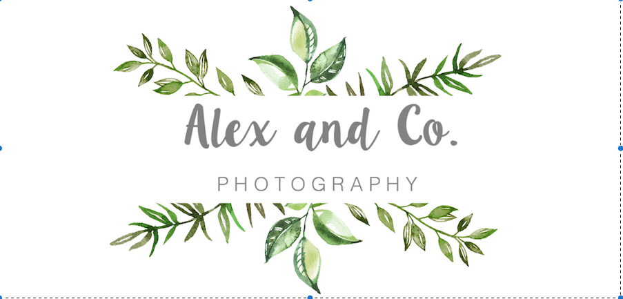 Alex & Co. Photography