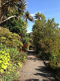 Logan Botanic Gardens