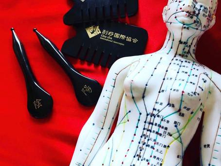 「はじめての中医学とかっさ〜中医学とは自分を知ること〜」ws開催のお知らせ(onlineでも聴講可能)