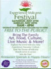 EV festival poster 2019.jpg