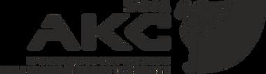 Завод АКС производство литейного оборудования станки литье металов чугун медь алюминий сталь латунь модельная оснастка