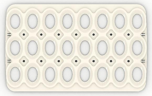 תבנית 24 ביצים -MAX/PRO 50