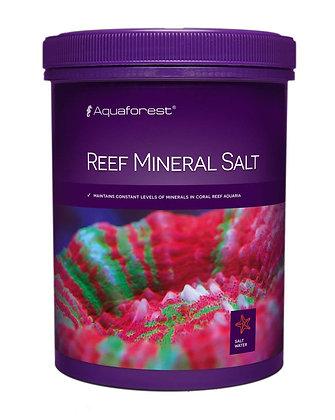 מלח ריף מינרל