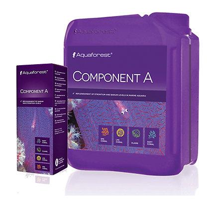 Component A קומפוננט