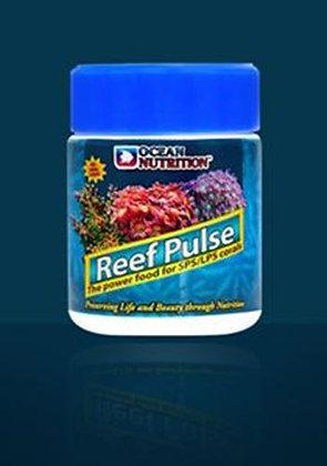 Reef Pulse  ריף פולס מזון יבש לאלמוגים