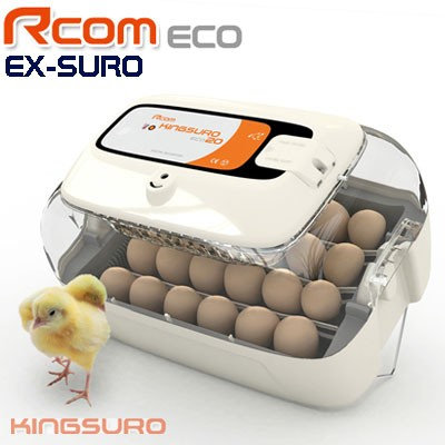 Rcom King Suro ECO20 - מדגרת בעלי כנף