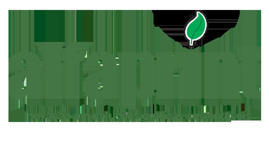 Alfaprint.png