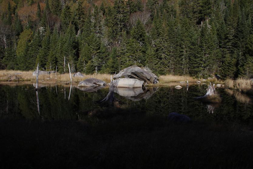 Parc national du Mont-Temblant