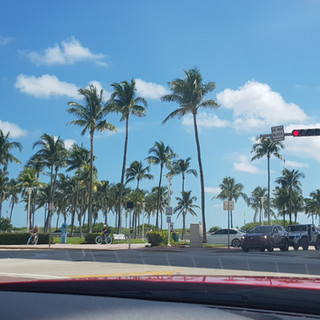 טיול למיאמי