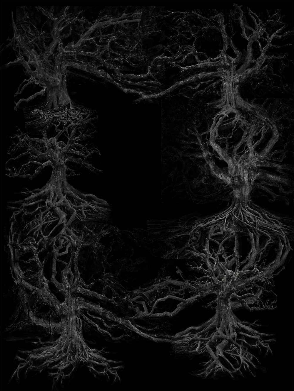 tree frame.png