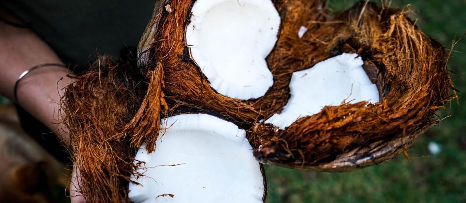 Le lait et la crème de coco
