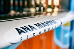 Ana Marina Flow House