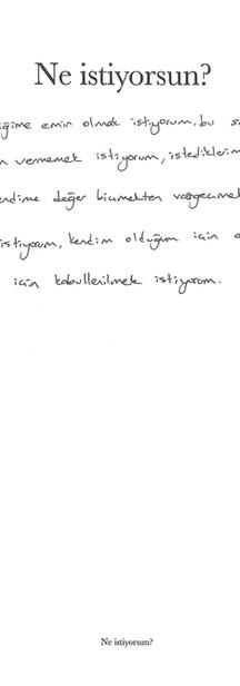 img304.jpg